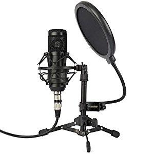 ZINGYOU ZY-801 Microphone