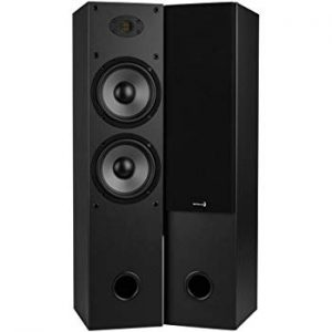 (Best Floor Standing Speakers Under $300) Dayton Audio T652-AIR tower speakers